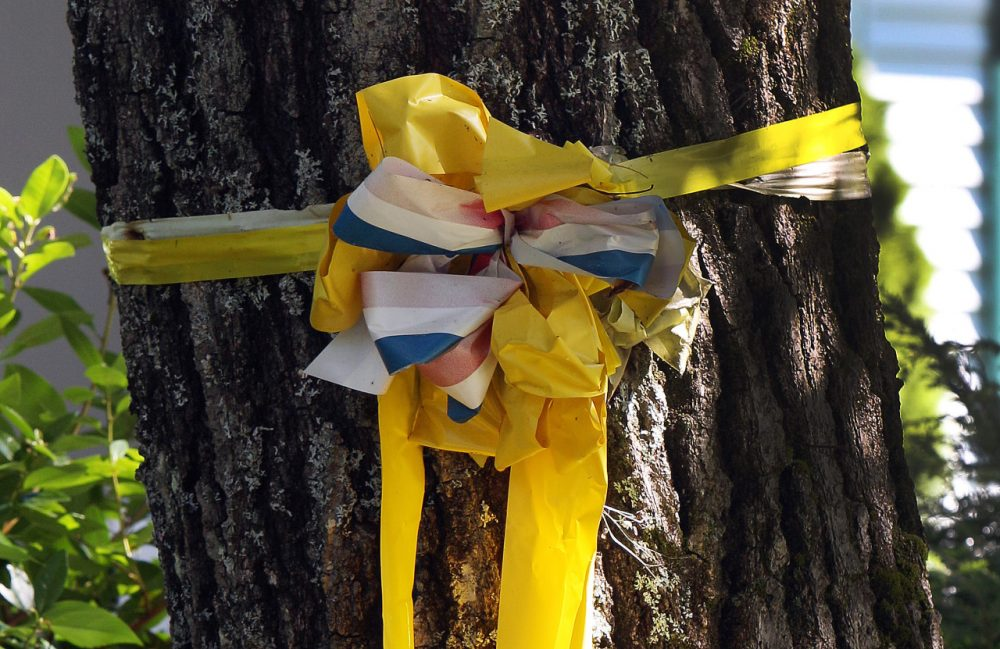 A yellow ribbon is tied to a tree outside the family home of freelance journalist James Foley. (Jim Cole/AP)
