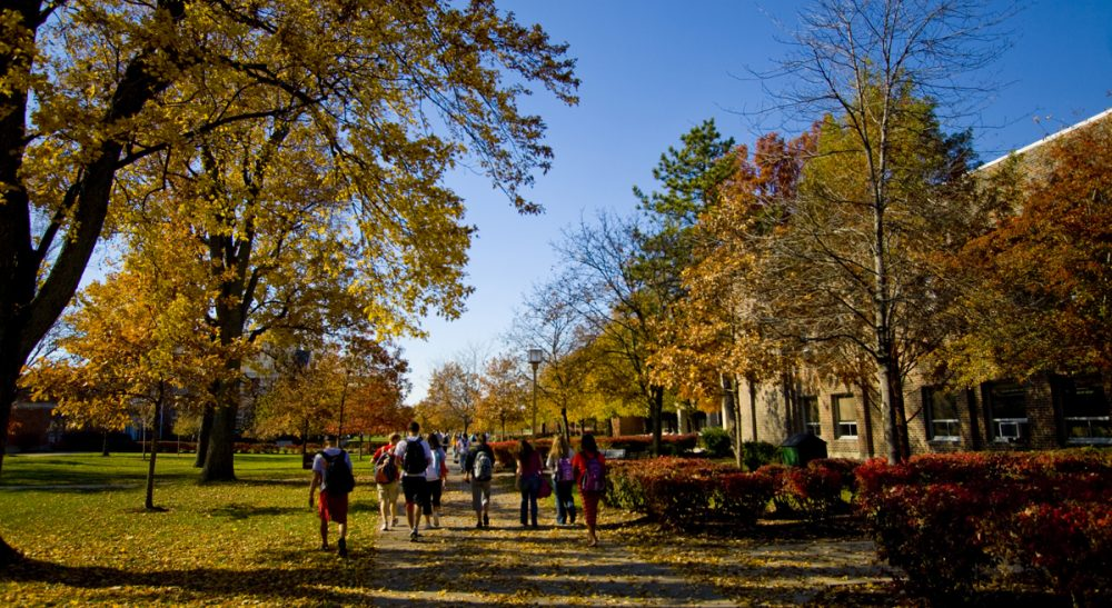 "Judith Sizer: ""The media and the government may have turned a light onto sexual violence on campus, but effective prevention can only happen one student at a time."" Pictured: fall at Ohio Northern University. (kcolwell/Flickr)"
