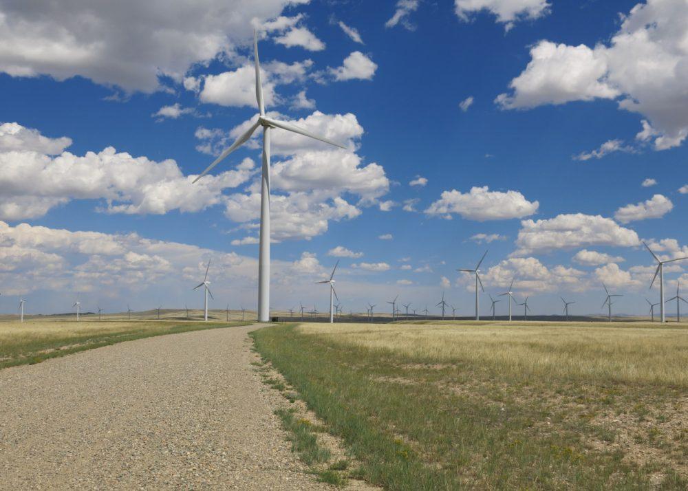 High Plains Wind Farm near McFadden, Wyoming on a breezy summer day. (Inside Energy)