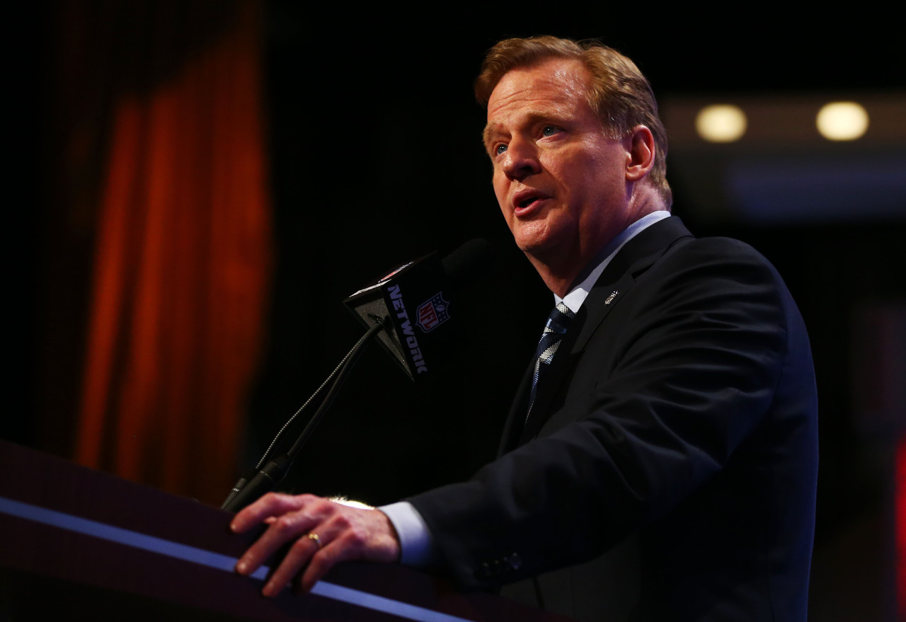 Roger Goodell had initially suspended Ray Rice for two games, but has since extended the suspension indefinitely. (Elsa/Getty Images)