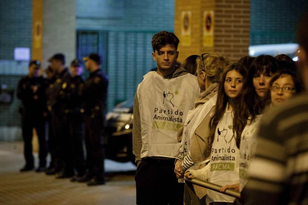 Animal Rights activists stand outside a block of apartments where a Spanish nurse who tested positive for the Ebola virus lives on October 7, 2014 in Alcorcon, near Madrid, Spain. (Pablo Blazquez Dominguez/Getty Images)