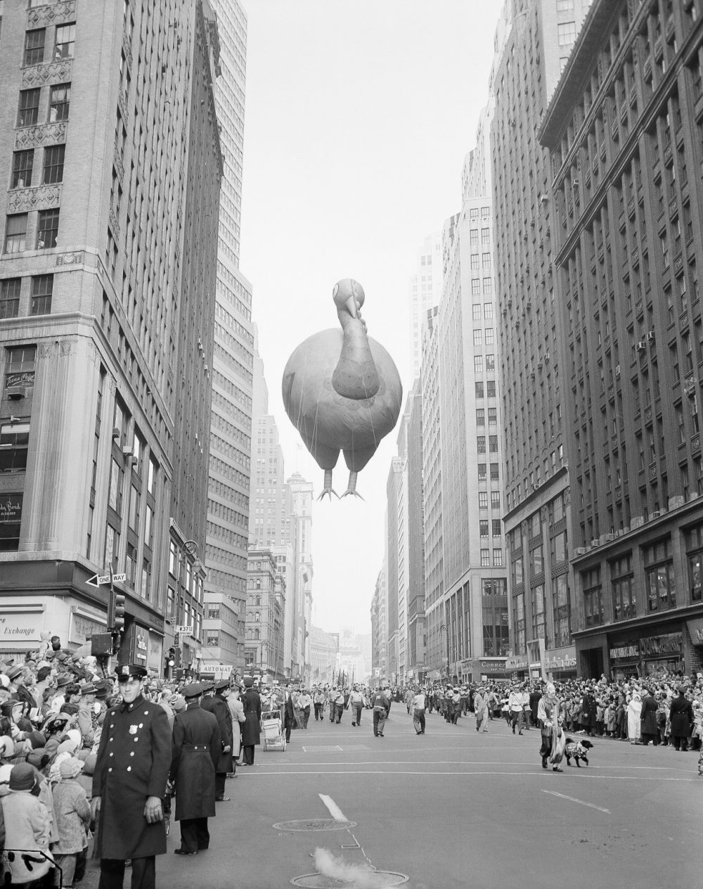 A giant turkey float squeezes between buildings as the 31st annual Macy's Thanksgiving Day Parade in 1957. (John Lindsay/AP)