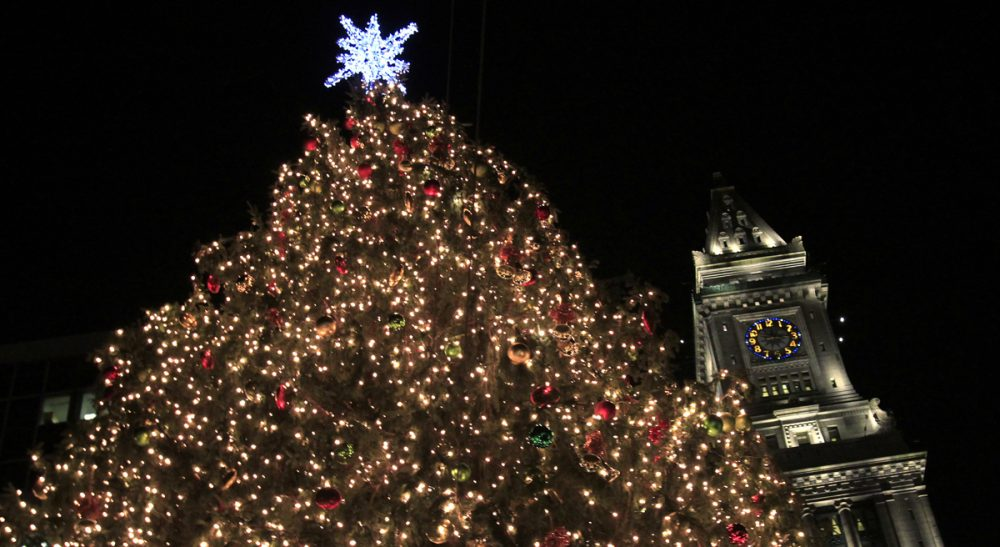 "Miriam Stein: ""What really makes me feel like I don't belong are the official ways that Christmas is celebrated in our supposedly secular country. December 25 is a legal holiday. Many public offices feature wreaths and Santa Claus, symbols of the season."" Pictured: Christmas lights glow on the tree at Faneuil Hall in Boston. (Charles Krupa/AP)"