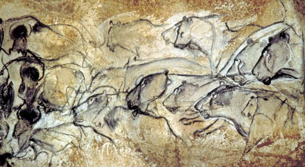 "Paul Fallon: ""My gut response to research in the Cave de Chauvet Pont d'Arc is to cease our meddling and seal it back up."" Pictured: A drawing in the Cave de Pont d''Arc in southern France. According to UNESCO, the cave contains the best preserved ancient figurative drawings in the world. The drawings were unexpectedly discovered in 1994 by researcher Jean-Marie Chauvet. (AP Photo/DRAC Rhone-Alpes, Ministere de la Culture)"