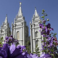 """In this Sept. 3, 2014 photo, flowers bloom in front of the Salt Lake Temple. Mormon church leaders are making a national appeal for a """"balanced approach"""" in the clash between gay rights and religious freedom. The church is promising to support some housing and job protections for gays and lesbians in exchange for legal protections for believers who object to the behavior of others. (Rick Bowmer/AP)"""