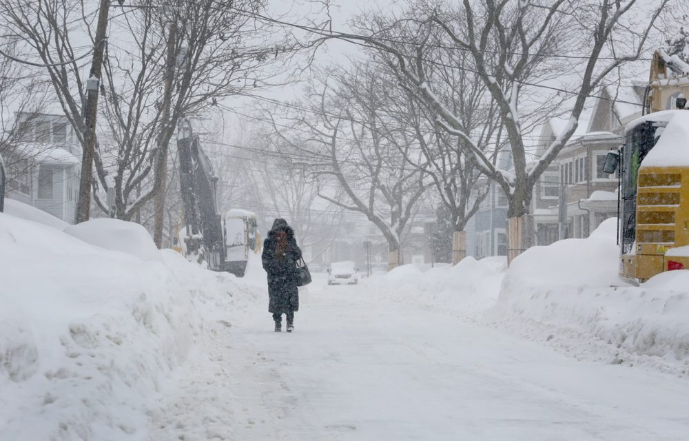 Alma Az, 43, waits for a bus on Concord Avenue in Cambridge Monday, as she makes her way to work in Copley Square.