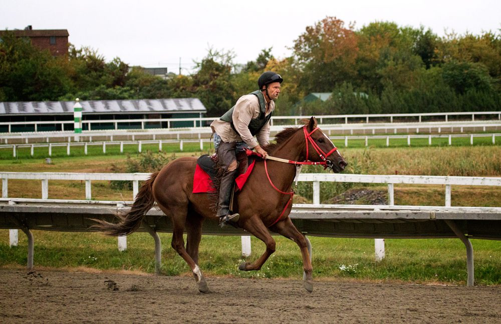Jockey Chris Shultz takes Tale Of Houdini for a lap around the track during a training run for the final day of racing at Suffolk Downs last October. (Jesse Costa/WBUR)