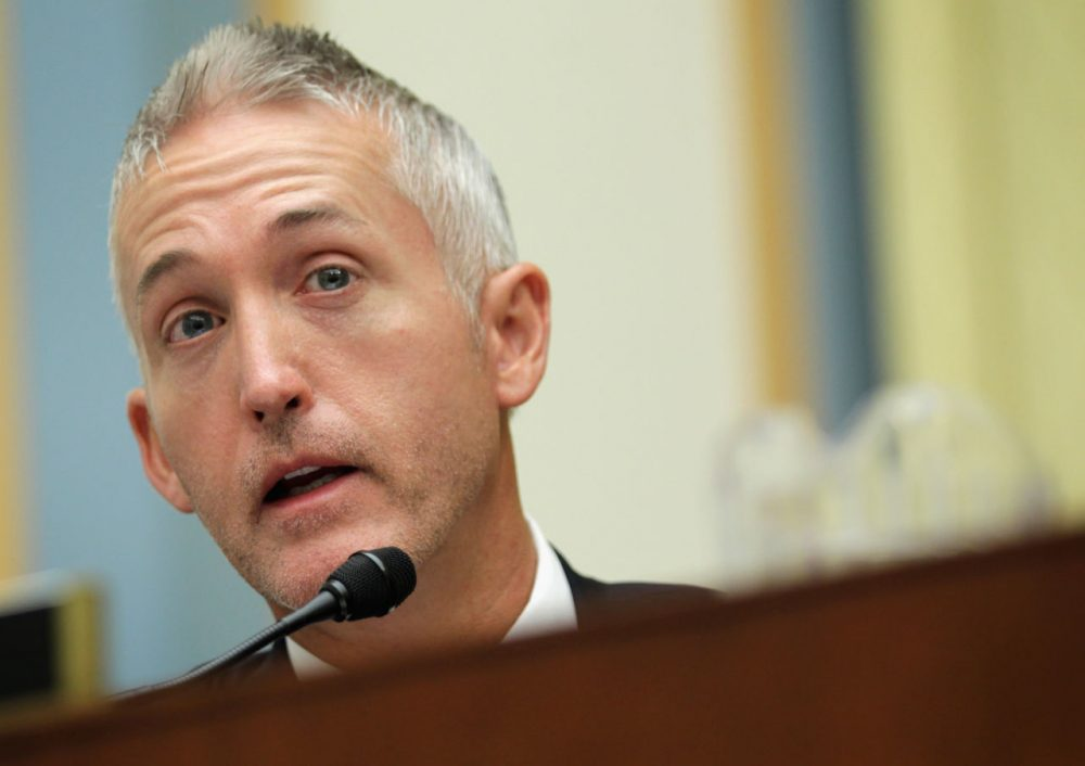 U.S. Rep. Trey Gowdy (R-SC) speaks during a hearing before the House Judiciary Committee June 11, 2014 on Capitol Hill in Washington, D.C. (Alex Wong/Getty Images)
