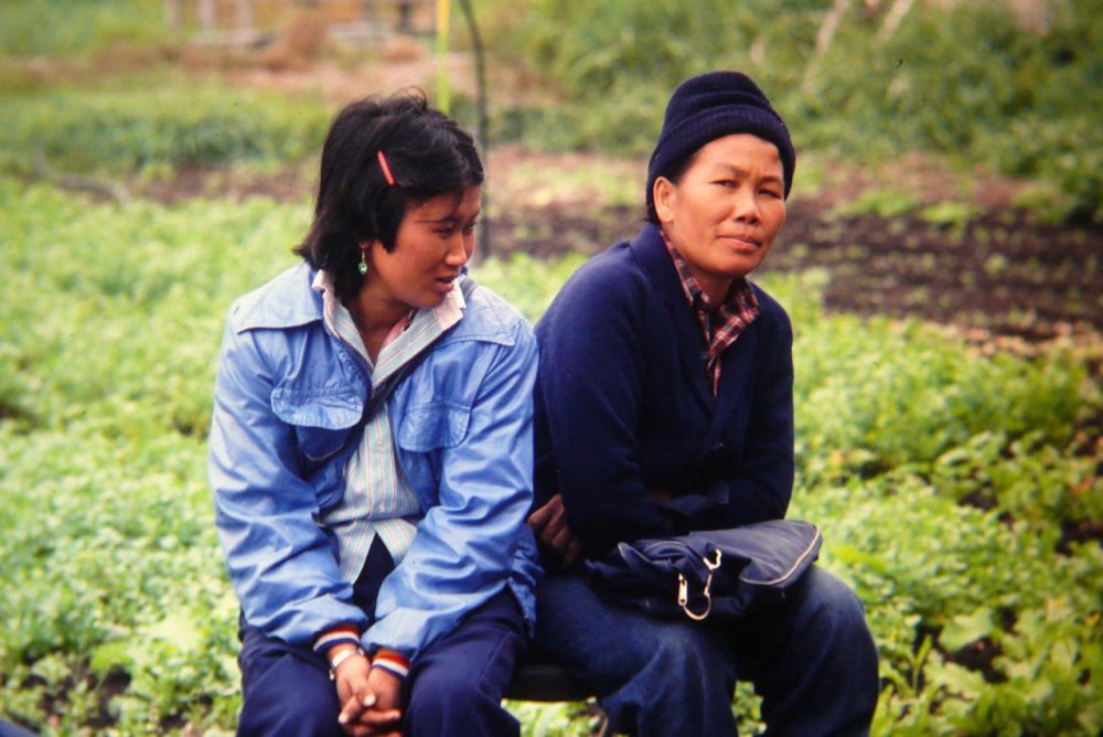 Cheu Chang, right, at the Indochinese Farm Project in Woodinville in the mid-80s. (Courtesy of Sharon Coleman/WSU Extension)