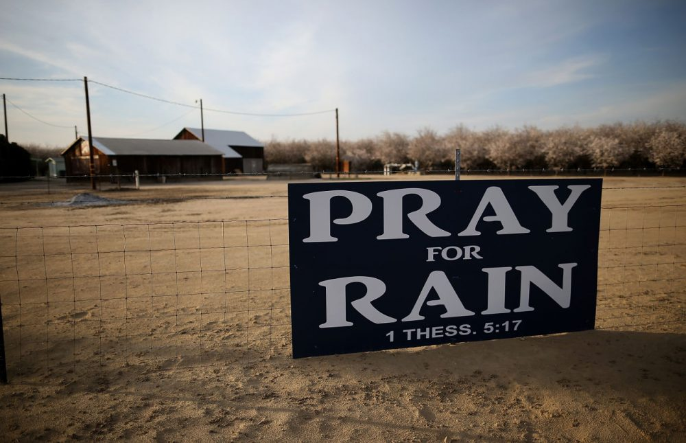 A sign is posted near an almond farm on February 25, 2014 in Turlock, California. (Justin Sullivan/Getty Images)