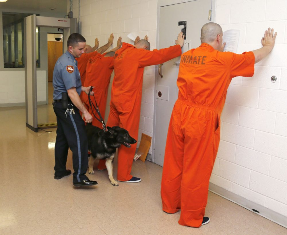 In this Thursday, Jan. 24, 2013 file photo, Corrections officer Sgt. Kenny Madden and his canine, Belle, check over prisoners at the Lexington Assessment and Reception Center, in Lexington, Okla,  (AP)