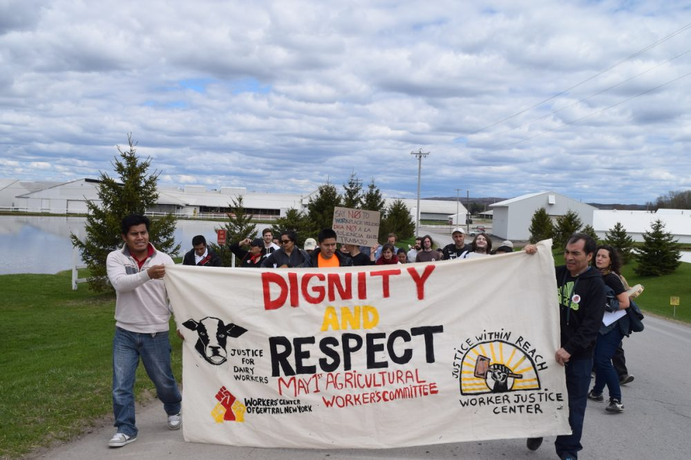 About 40 farm workers and advocates marched to the front gates of Marks Farm, south of Lowville, N.Y., to protest alleged worker abuses. (Photo Courtesy of David Sommerstein)