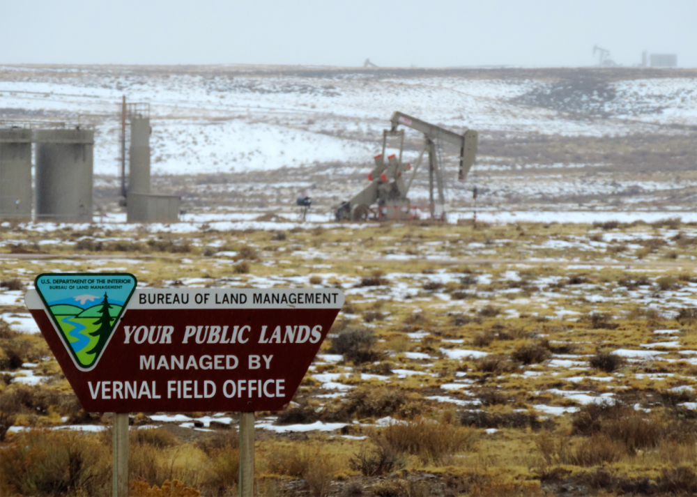 Before drilling on state or federal lands, oil companies must win the right to drill at a mineral auction. A recent state mineral auction in North Dakota and federal auction in Wyoming brought in the lowest amount of money in years. (WildEarth Guardians/Flickr)