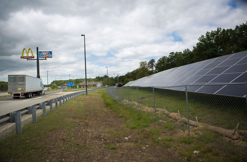 Solar panels are seen beside the Mass Pike in Framingham. (Jesse Costa/WBUR)
