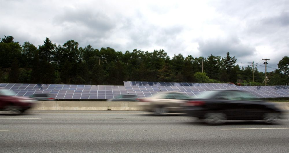 Solar panels are seen beside the Mass Pike in Natick on Wednesday. (Jesse Costa/WBUR)
