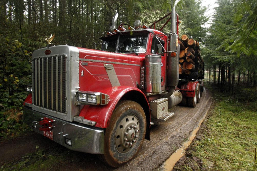A loaded logging truck heads down the road in the forest near Banks, Ore.  (Don Ryan/AP)