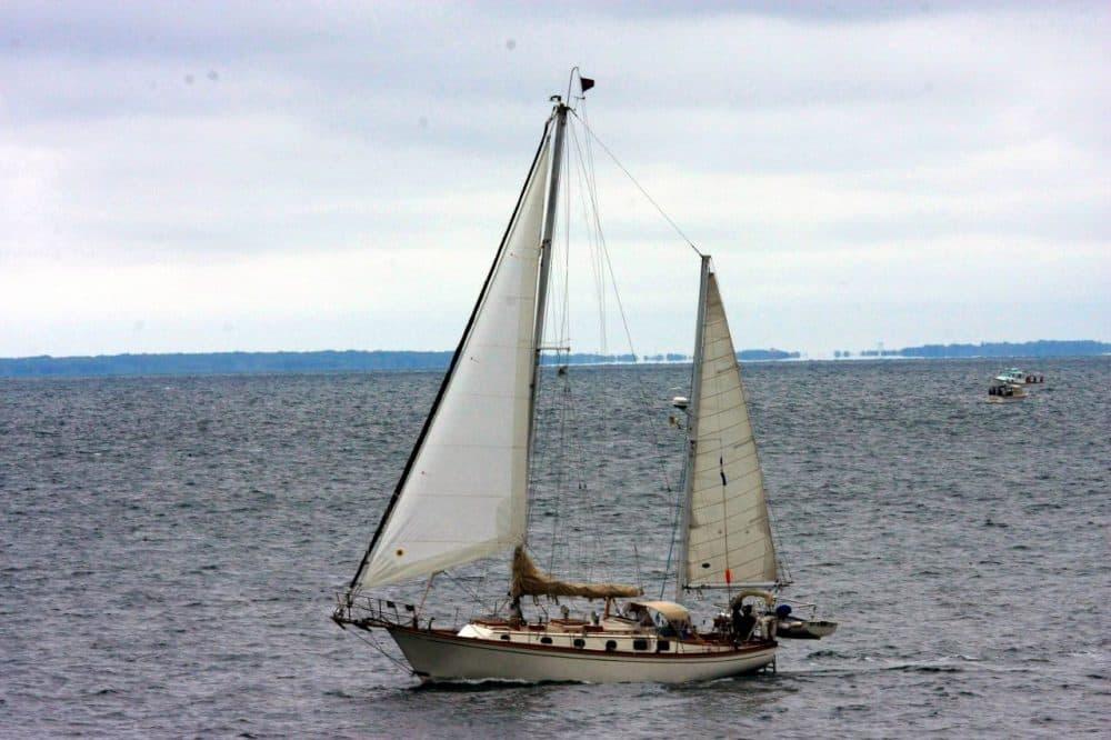 Sailing on Buzzards Bay in Cape Cod. (Courtesy Bruce Tuten/Flickr)