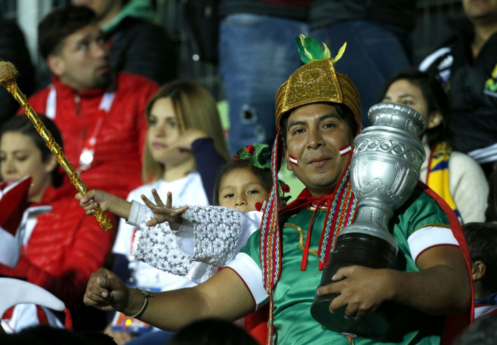 The Copa America Cup has kicked off and fans are coming out to support their teams. (Luis Hidalgo/AP)