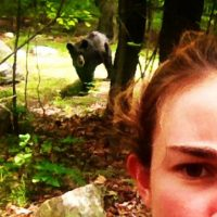 When people take selfies with wild animals, they may be putting themselves or the animals at risk. (jentwen/Instagram)