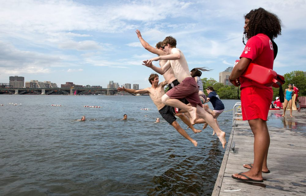 About 200 swimmers took park in Tuesday's Charles River swim, hosted by the Charles River Conservancy. (Robin Lubbock/WBUR)