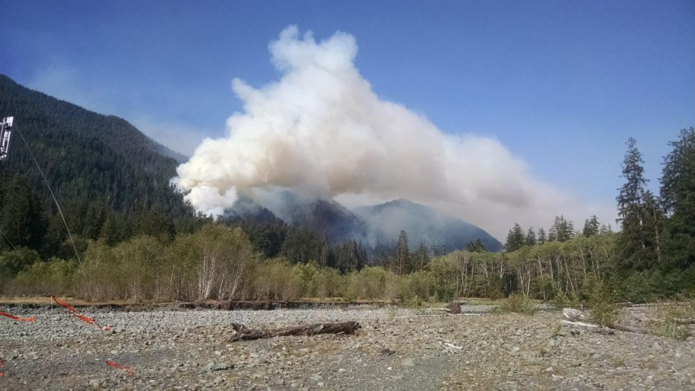 The Paradise fire is burning in Olympic National Park in the Queets River. While it may seem unusual to have a fire of this size burning in a rain forest, this is a reflection of severe conditions - the driest spring in over 100 years and a snowpack that was only 14% of average. (Courtesy National Wildfire Coordinating Group)
