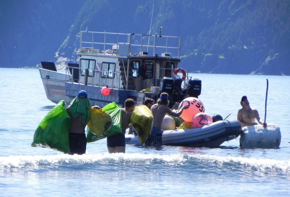 Volunteers with Gulf of Alaska Keeper work on a cleanup and monitoring project at Gore Point.  (goak.org)