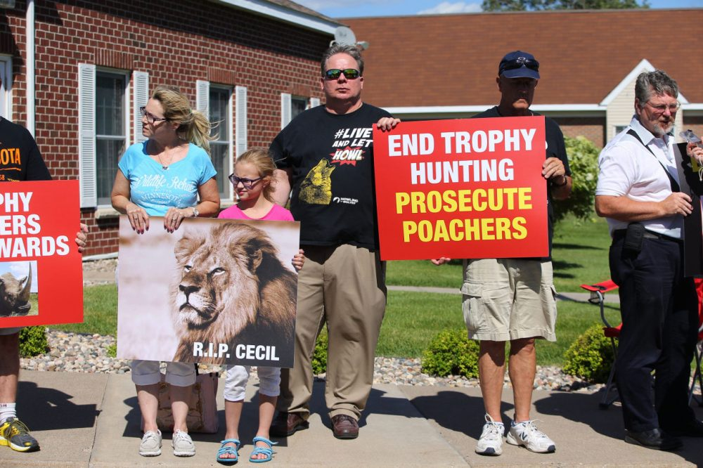 People protest against poaching after the death of Cecil the lion, in the parking lot of Dr. Walter Palmer's River Bluff Dental Clinic on July 29, 2015 in Bloomington, Minnesota. (Adam Bettcher/Getty Images)