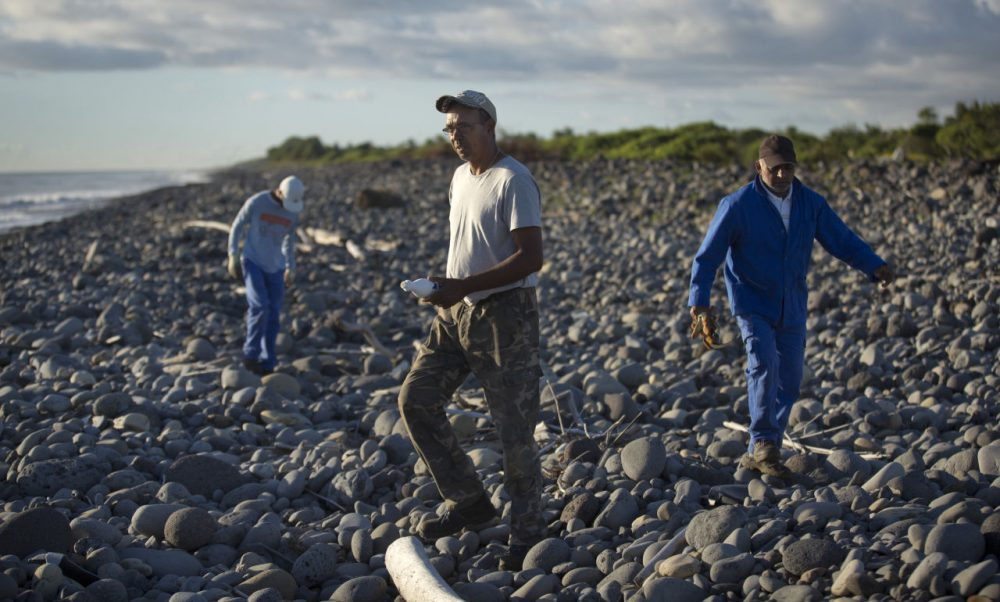 Workers for an association responsible for maintaining paths to the beaches from being overgrown by shrubs, search the beach for possible additional airplane debris near the shore where an airplane wing part was washed up on the north coast of the Indian Ocean island of Reunion on Friday. (Ben Curtis/AP)