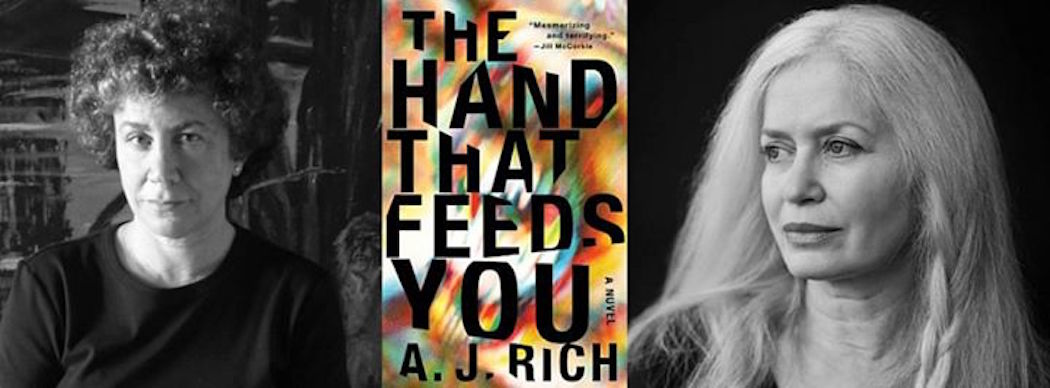 Written as A.J. Rich, Amy Hempel and Jill Ciment's co-written book is a high stakes thriller and a notable shift in both their literary styles. (Courtesy)