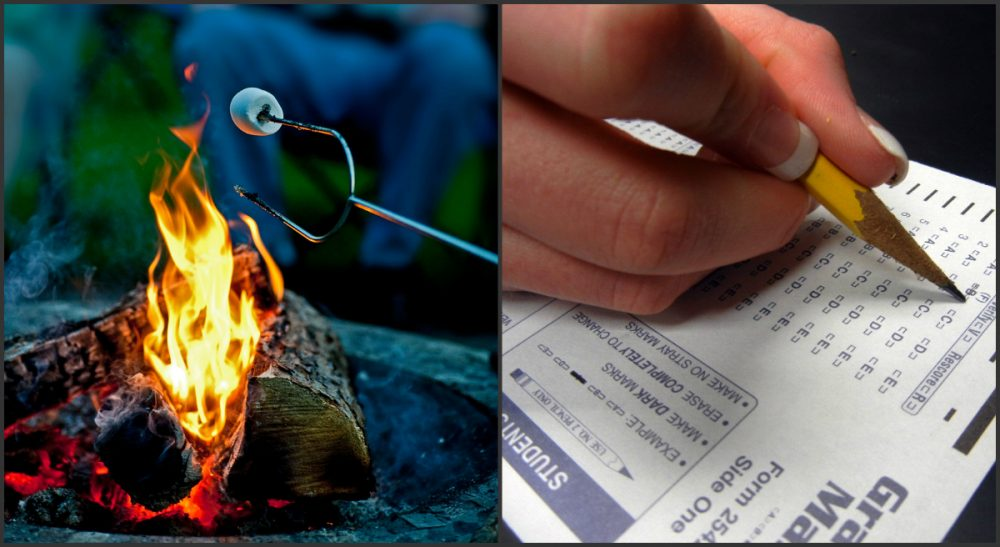 """Sandra Miller: """"I don't know what I hate more: that SAT Camp exists, or that I still feel torn about enrolling my son."""" (Photo credits left to right: mnlamberson/flickr, biologycorner/flickr)"""