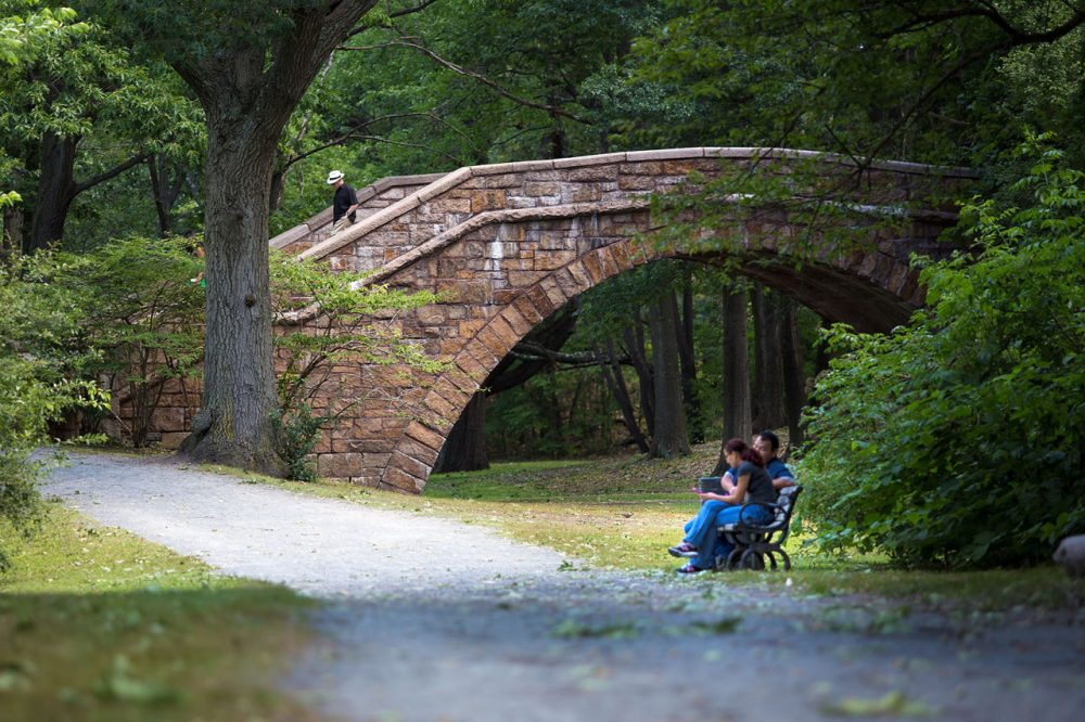 A couple sits on a bench near the Short Street Step Bridge by the Muddy River on the Riverway. The Riverway is part of landscape architect Frederick Law Olmsted's Emerald Necklace. (Jesse Costa/WBUR)