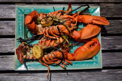 Two grilled lobsters are ready to be eaten. (Jesse Costa/WBUR)