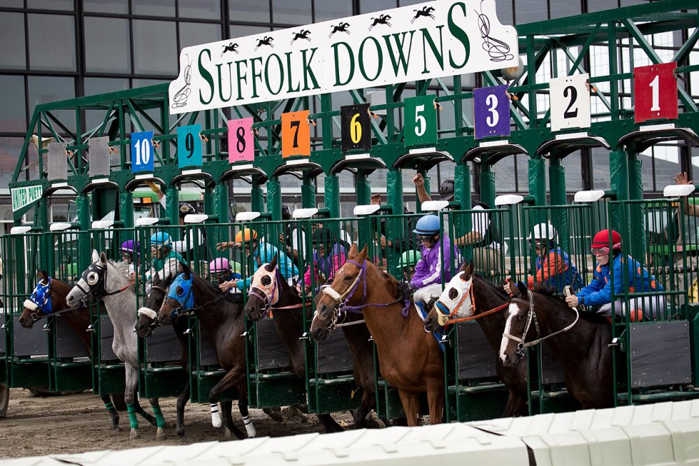 """Horses line up at the gate during the last day of live racing at Suffolk Downs on Oct. 4, 2014.  Three special """"festival"""" race days are coming up in the fall of 2015. (Jesse Costa/WBUR)"""