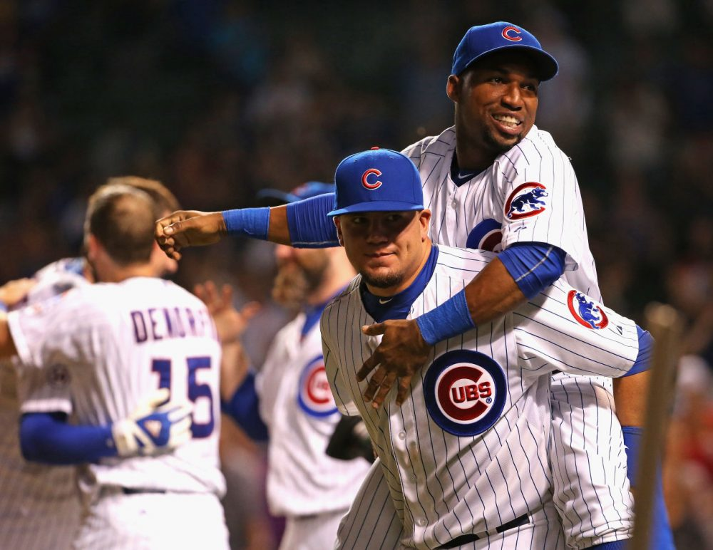 Don't celebrate too soon! But the Chicago Cubs just might make the play-offs this year. (Jonathan Daniel/Getty Images)