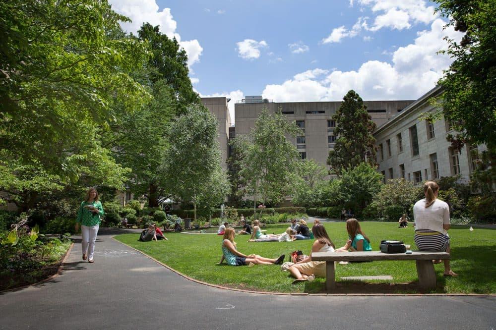 The Prouty Garden, at Boston Children's Hospital is seen in June. (Robin Lubbock/WBUR)