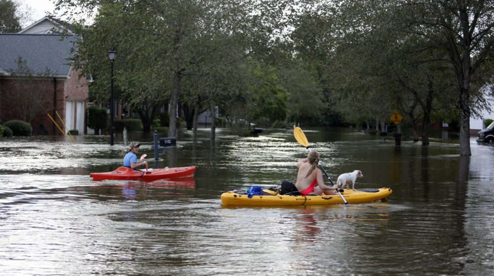 Residents of Summerville, S.C., survey storm damage in their neighborhood. (Mic Smith/AP)
