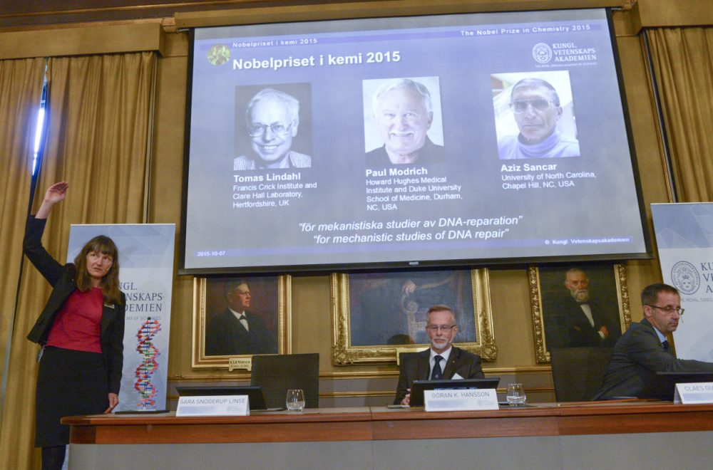 """Professor Sara Snogerup Linse, left explains why the laureates were awarded as Goran K. Hansson (center) and Claes Gustafsson, members of the Nobel Assembly sit during a press conference at the Royal Swedish Academy in Stockholm, Wednesday, Oct. 7, 2015. Sweden's Tomas Lindahl, American Paul Modrich and U.S.-Turkish scientist Aziz Sancar won the Nobel Prize in chemistry on Wednesday for """"mechanistic studies of DNA repair."""" (Fredrik Sandberg/TT News Agency via AP)"""