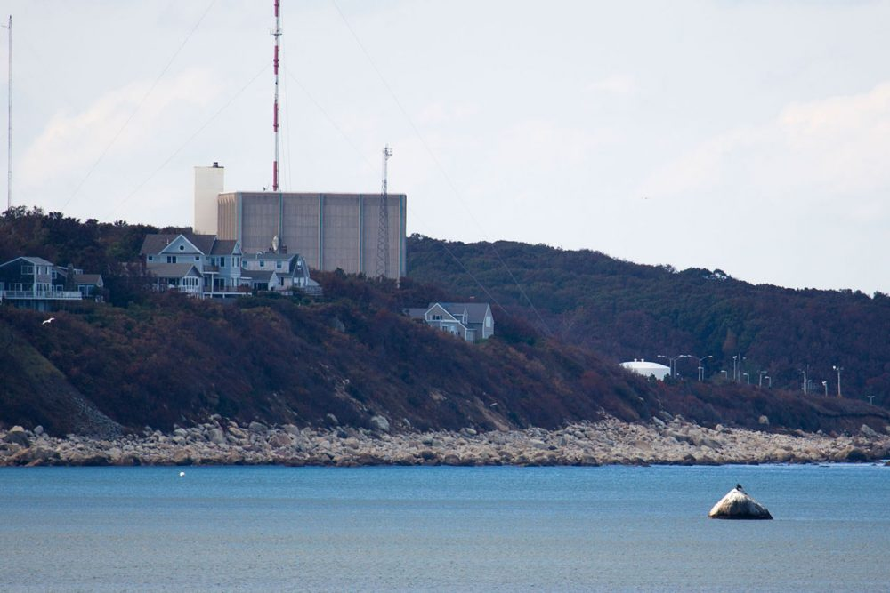 The Pilgrim Nuclear Power Station in Plymouth will close no later than June 1, 2019. (Jesse Costa/WBUR)