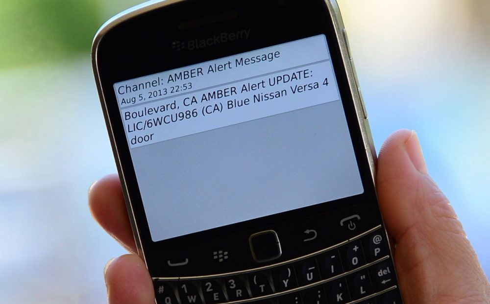 A cellphone displays the Amber Alert issued late on August 5, 2013 in Los Angeles, California, which marked the first time officials have notified the public of a statewide Amber Alert through their cellphones. The alert was in reference to James Lee DiMaggio, suspected of killing Christina Anderson, 44, and kidnapping one or both of her children: Hannah Anderson, 16, and Ethan Anderson, 8. Cellphone owners reportedly received messages automatically based on their proximity to the emergency, and not based on their phone number. The Amber Alerts sent out overnight described the vehicle DiMaggio is believed to be traveling in: a blue Nissan Versa with California license plate 6WCU986. Authorities believe the suspect may be making his way north to Canada. (Frederic J. Brown/AFP/Getty Images)