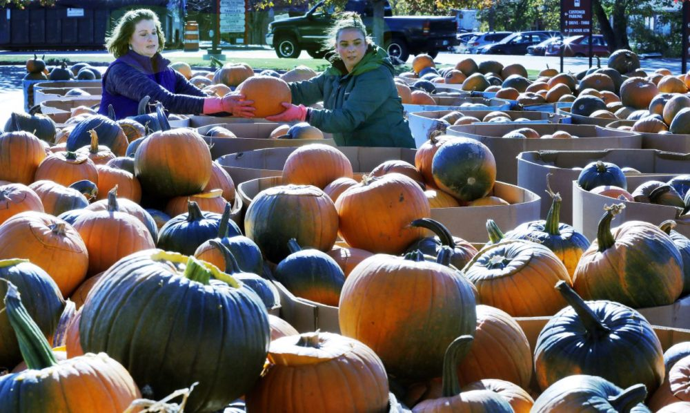 Lindsay Cota-Robles, left, and Tiffany Benton work to prepare about 4,000 pumpkins to be carved for Saturday's pumpkin festival on Friday in Laconia, N.H. The festival was held in Keene since 1991, but last year's event turned violent, with alcohol-fueled parties nearby leading to injuries, property damage and more than 100 arrests. (Jim Cole/AP)