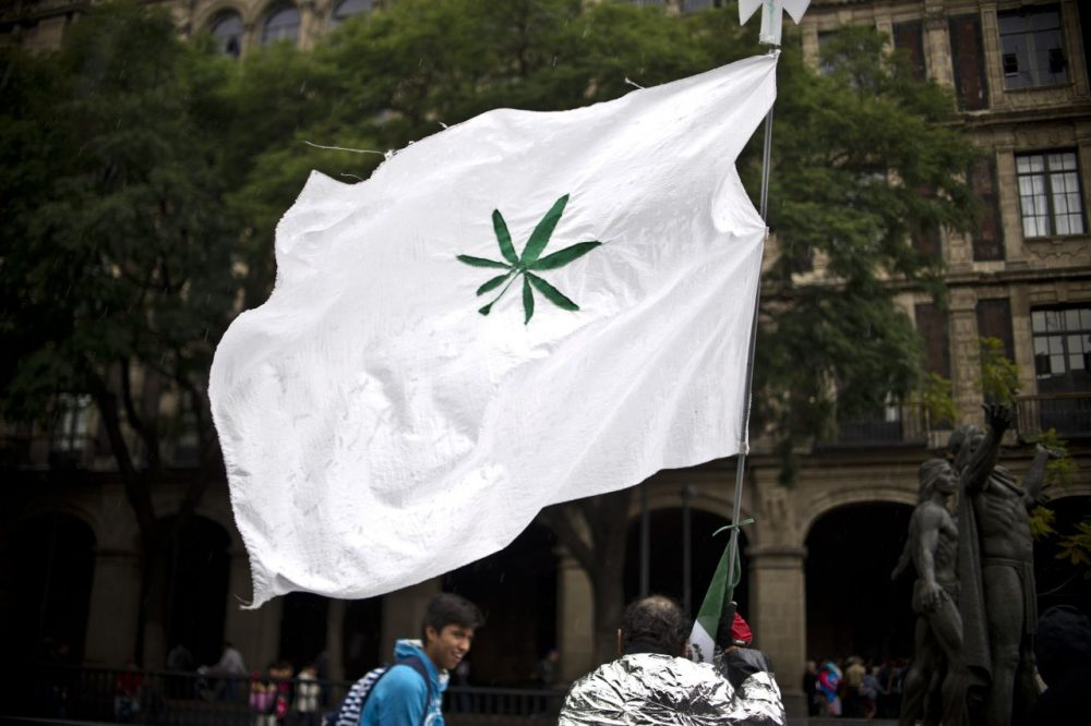 Activists participate in a rally in front of Supreme Court of Justice in Mexico City on October 28, 2015. Mexico's Supreme Court on Wednesday began discussing the possibility of decriminalizing marijuana for recreational use. A group of citizens who created the Sociedad Mexicana de Autoconsumo Responsable y Tolerante (SMART) organization lodged an appeal before the Supreme Court for the decriminalization of marijuana for no-profit uses. (Yuri Cortez/AFP/Getty Images)