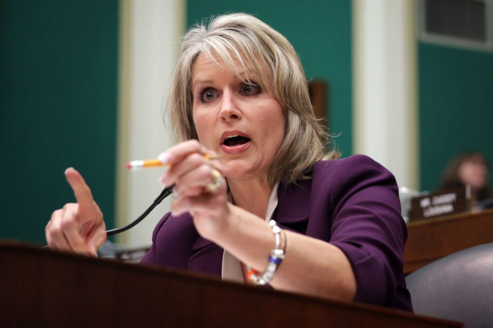 U.S. Rep. Renee Ellmers (R-NC) speaks during a hearing on implementation of the Affordable Care Act before the House Energy and Commerce Committee October 24, 2013 on Capitol Hill in Washington, DC. Ellmers is up for re-election as are the other nine Republican representatives from North Carolina. (Alex Wong/Getty Images)