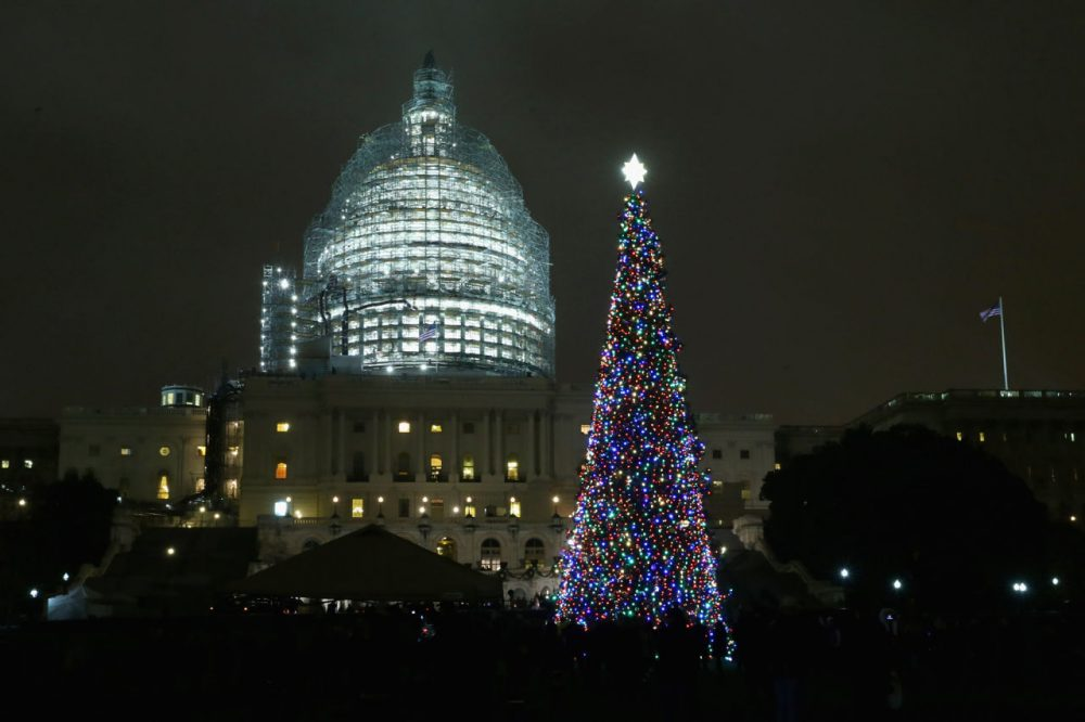 The Capitol Christmas tree is shown lighted during a ceremony on the west front of the U.S. Capitol December 2, 2015 in Washington, DC. (Chip Somodevilla/Getty Images)