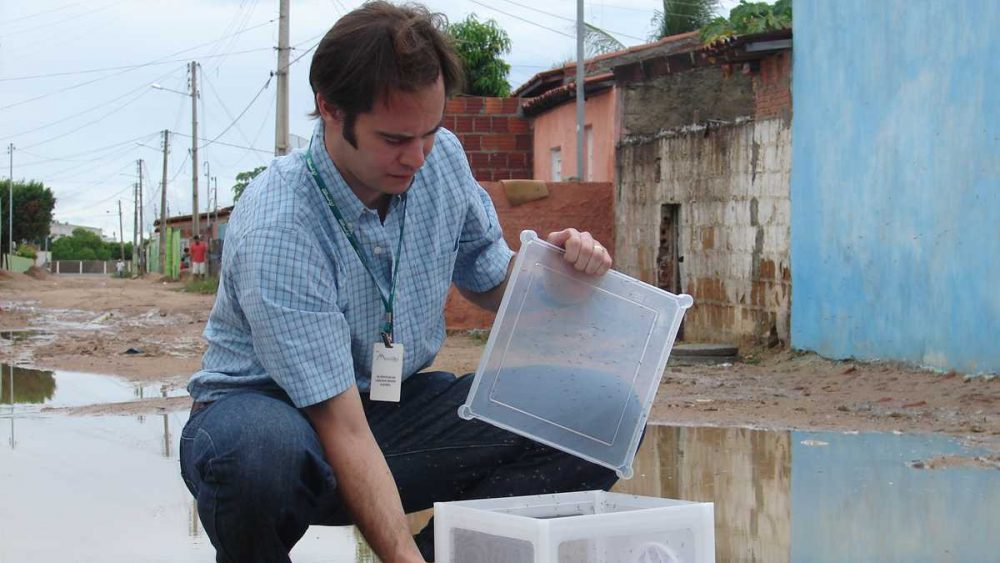 Dr. Andrew McKemey releases Oxitec male mosquitoes in Brazil. (Courtesy of Oxitec)