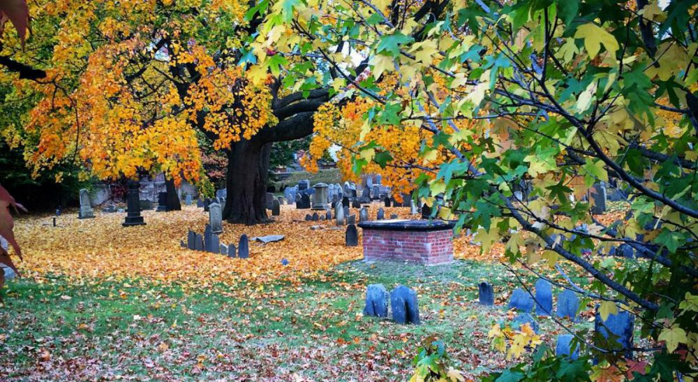 "H. Louise Messinger: ""Dorchester North Burying Ground is a natural -- and national -- treasure. Woven through its beauty are vibrant stories -- a rich history of a place that deserves to remember itself. "" (Author/ Courtesy)"