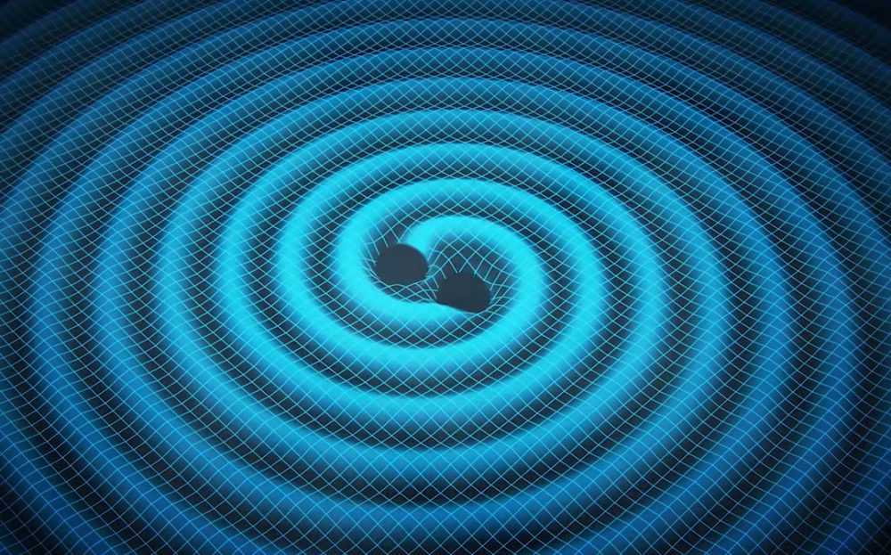 Merging black holes ripple space and time in this artist's concept. Pulsar-timing arrays – networks of the pulsing cores of dead stars – are one strategy for detecting these ripples, or gravitational waves, thought to be generated when two supermassive black holes merge into one. (Image credit: Swinburne Astronomy Productions via NASA Jet Propulsion Lab)