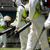 In this Jan. 27 file photo, a fumigation brigade sprays an area of Chacabuco Park in a Aedes mosquito control effort, in Buenos Aires, Argentina. The Zika virus is suspected of causing a rare but potentially devastating birth defect, an abnormally small head, which can indicate underlying brain damage. Concerns are keeping some workers from attending meetings and company retreats in affected locations but business travel experts say it does not yet appear to be having a broad impact. (Natacha Pisarenko/AP)