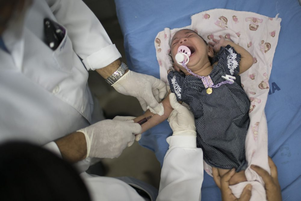 A doctor draw blood from Luana, who was born with microcephaly, at the Oswaldo Cruz Hospital in Recife, Brazil. Brazilian officials believe there's a sharp increase in cases of microcephaly and strongly suspect the Zika virus, which first appeared in the country last year, is to blame.  (AP Photo/Felipe Dana)