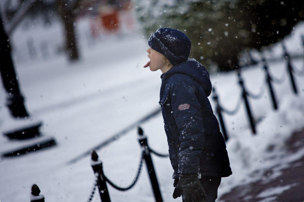 Leo Zavracky, 9, visiting from Dublin, Ireland, tries to catch snowflakes in mid-flight in the Boston Public Garden on Monday morning. (Jesse Costa/WBUR)