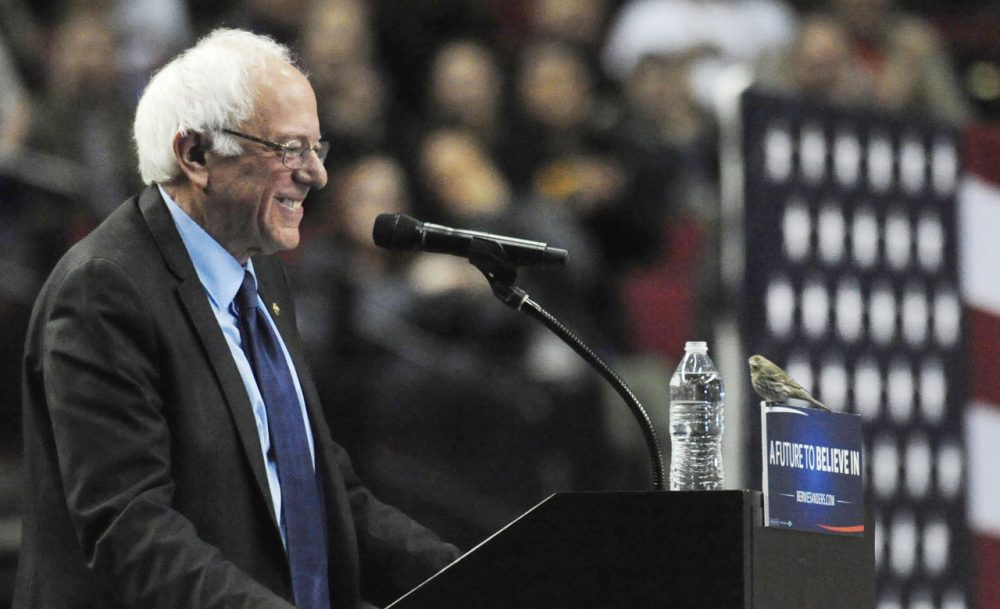 Democratic presidential candidate Sen. Bernie Sanders, I-Vt., smiles as a bird lands on his podium as he speaks during a rally at the Moda Center in Portland, Ore., Friday, March 25, 2016. (Steve Dykes/AP)